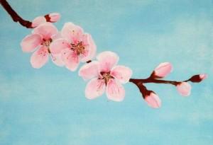 Tavasz, 20x30 cm, akril